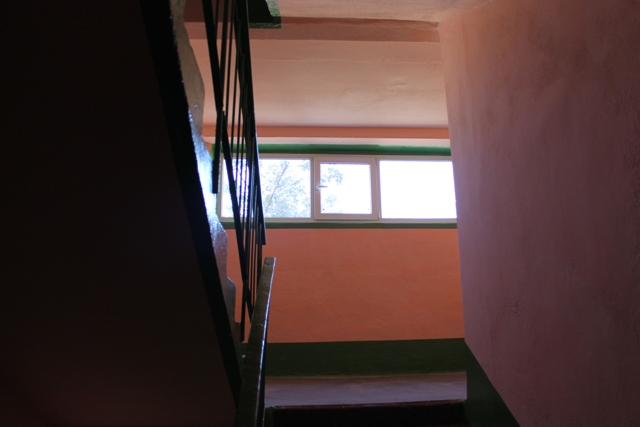 IMG_0803